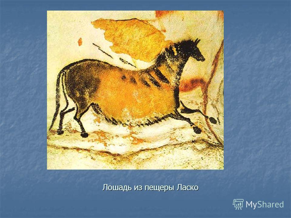 Лошадь из пещеры Ласко