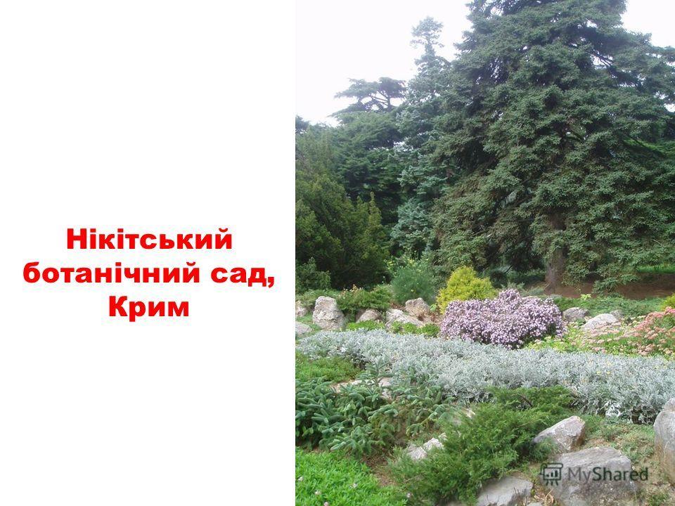 канатная дорога на гору Ай-Петрі, Крим