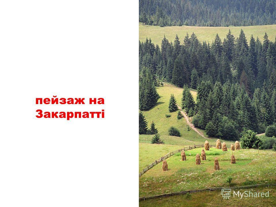 підйомник у c. Славське, Карпати