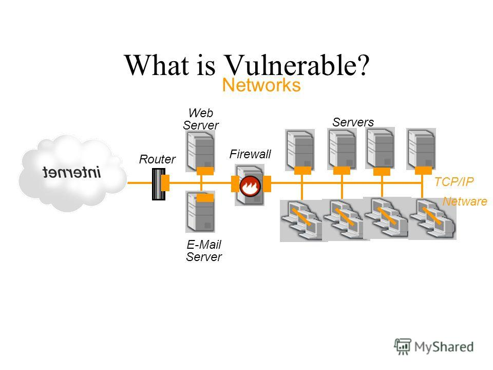 Firewall E-Mail Server Web Server Router Servers Networks TCP/IP Netware What is Vulnerable?