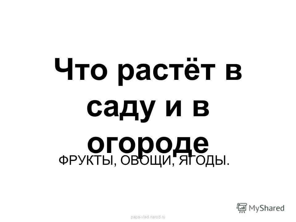 Что растёт в саду и в огороде ФРУКТЫ, ОВОЩИ, ЯГОДЫ. papa-vlad.narod.ru