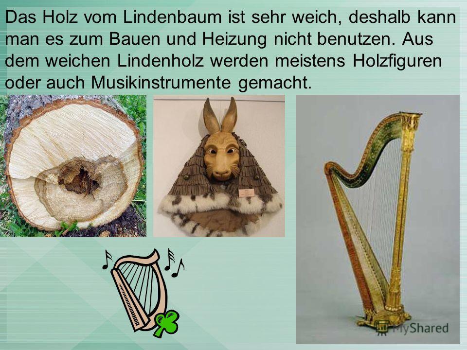 Das Holz vom Lindenbaum ist sehr weich, deshalb kann man es zum Bauen und Heizung nicht benutzen. Aus dem weichen Lindenholz werden meistens Holzfiguren oder auch Musikinstrumente gemacht.