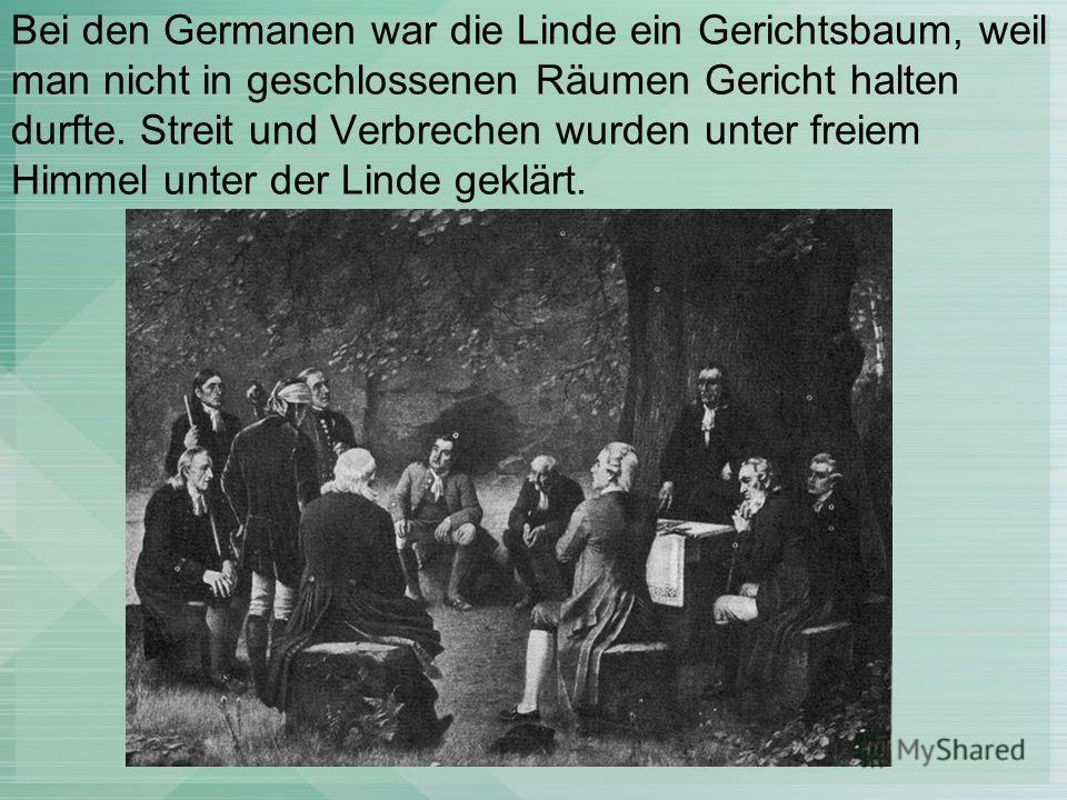 Bei den Germanen war die Linde ein Gerichtsbaum, weil man nicht in geschlossenen Räumen Gericht halten durfte. Streit und Verbrechen wurden unter freiem Himmel unter der Linde geklärt.