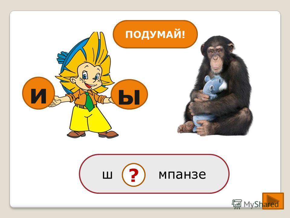 ы ш мпанзе ? и ПОДУМАЙ!