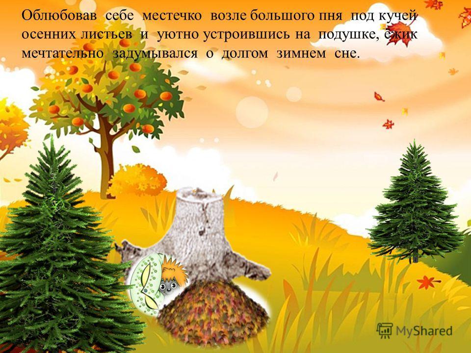 Облюбовав себе местечко возле большого пня под кучей осенних листьев и уютно устроившись на подушке, ёжик мечтательно задумывался о долгом зимнем сне.