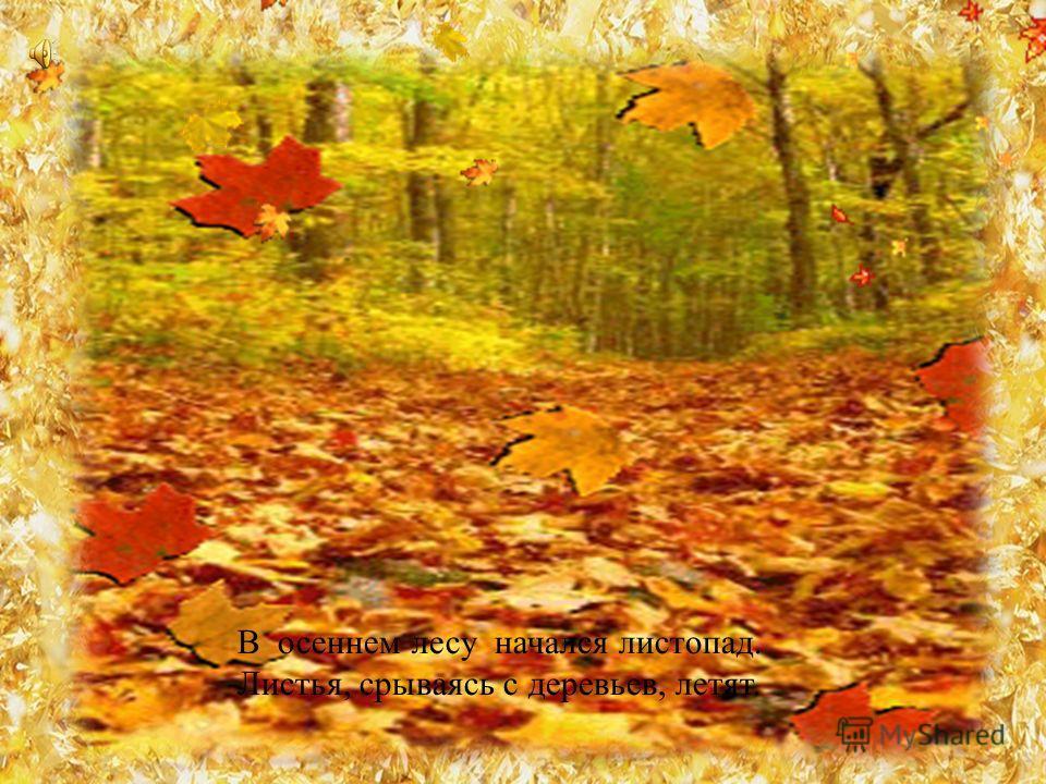 В осеннем лесу начался листопад. Листья, срываясь с деревьев, летят.