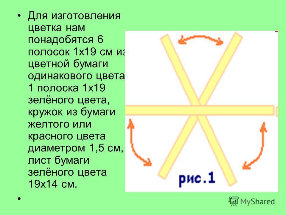 Для изготовления цветка нам понадобятся 6 полосок 1 х 19 см из цветной бумаги одинакового цвета и 1 полоска 1 х 19 зелёного цвета, кружок из бумаги желтого или красного цвета диаметром 1,5 см, лист бумаги зелёного цвета 19 х 14 см.