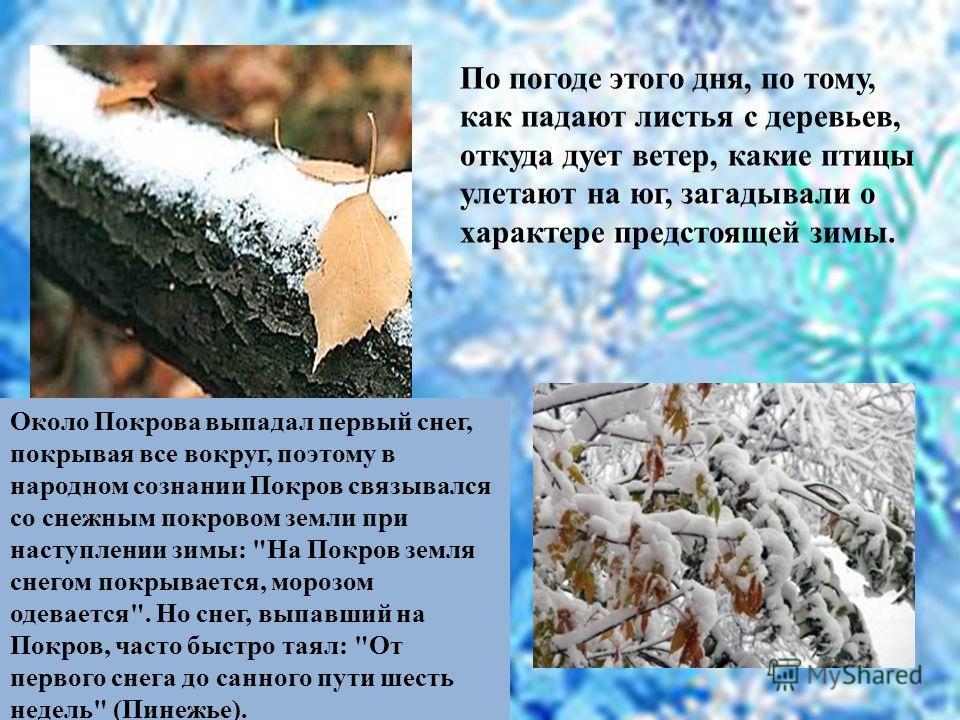 По погоде этого дня, по тому, как падают листья с деревьев, откуда дует ветер, какие птицы улетают на юг, загадывали о характере предстоящей зимы. Около Покрова выпадал первый снег, покрывая все вокруг, поэтому в народном сознании Покров связывался с