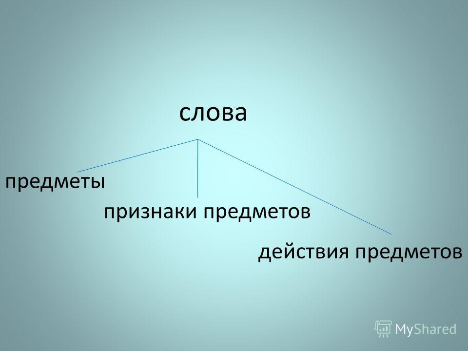 слова предметы действия предметов признаки предметов