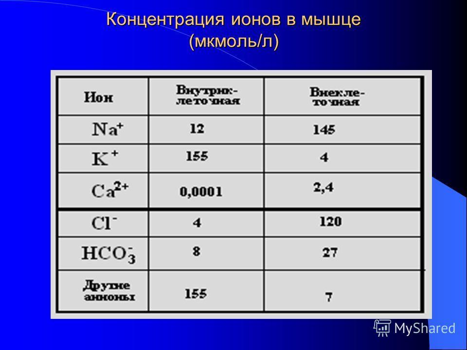 Концентрация ионов в мышце (мкмоль/л)