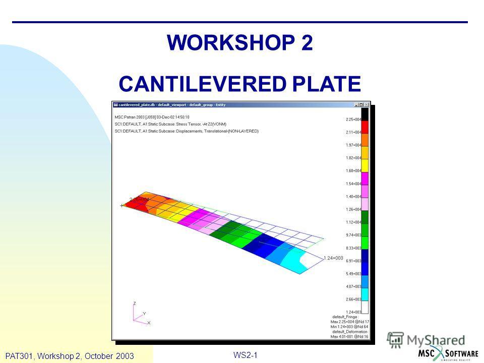 WS2-1 PAT301, Workshop 2, October 2003 WORKSHOP 2 CANTILEVERED PLATE
