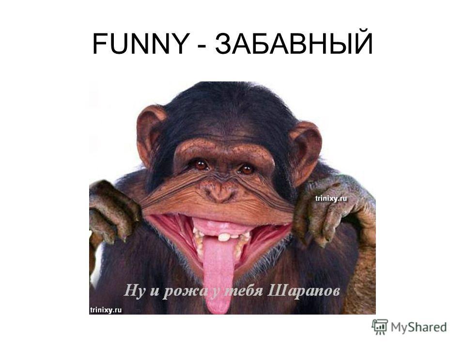 FUNNY - ЗАБАВНЫЙ