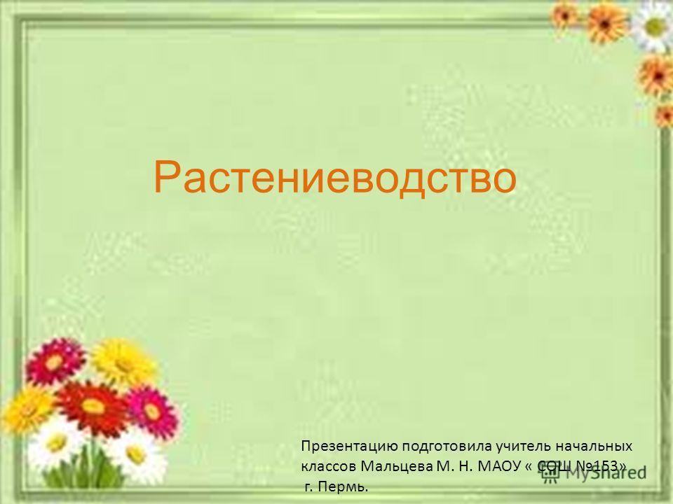 Растениеводство Презентацию подготовила учитель начальных классов Мальцева М. Н. МАОУ « СОШ 153» г. Пермь.