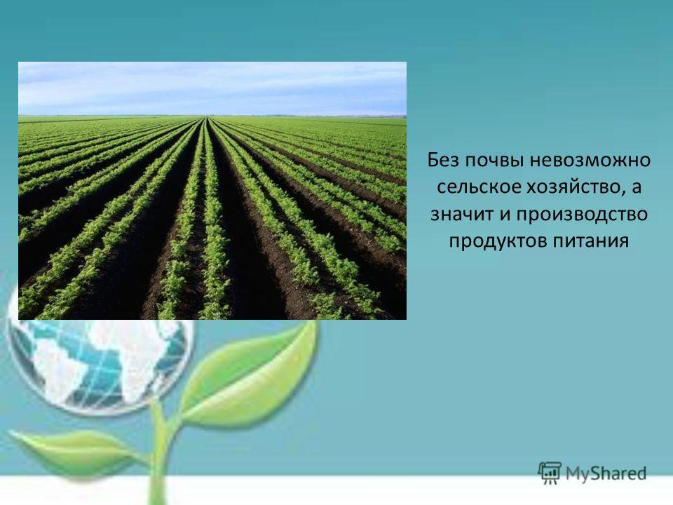 Без почвы невозможно сельское хозяйство, а значит и производство продуктов питания