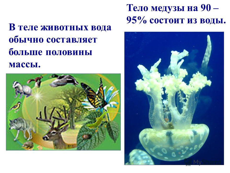 Мы на 70 % состоим из воды. Без воды человек может прожить только 3 дня.
