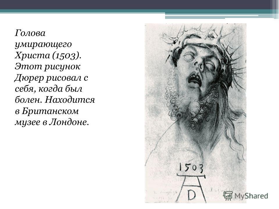 Голова умирающего Христа (1503). Этот рисунок Дюрер рисовал с себя, когда был болен. Находится в Британском музее в Лондоне.