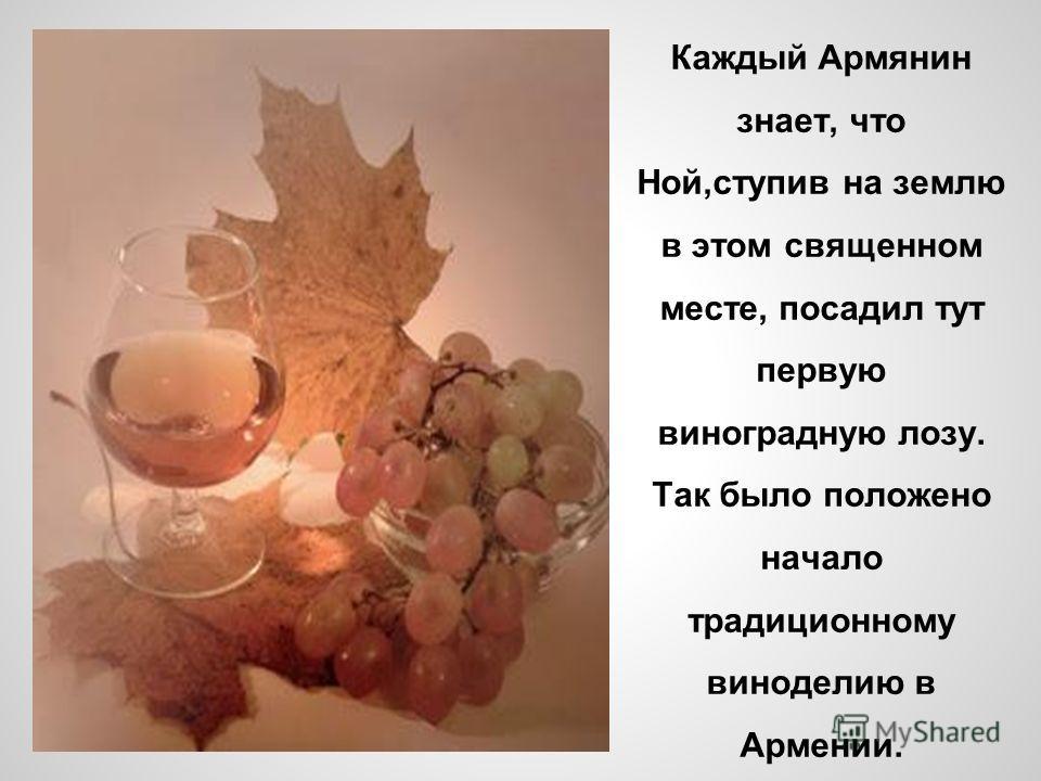 Каждый Армянин знает, что Ной,ступив на землю в этом священном месте, посадил тут первую виноградную лозу. Так было положено начало традиционному виноделию в Армении.