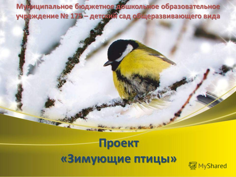 Проект «Зимующие птицы» Муниципальное бюджетное дошкольное образовательное учреждение 175 – детский сад общеразвивающего вида