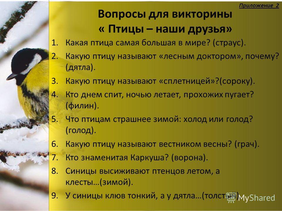 Вопросы для викторины « Птицы – наши друзья» 1. Какая птица самая большая в мире? (страус). 2. Какую птицу называют «лесным доктором», почему? (дятла). 3. Какую птицу называют «сплетницей»?(сороку). 4. Кто днем спит, ночью летает, прохожих пугает? (ф
