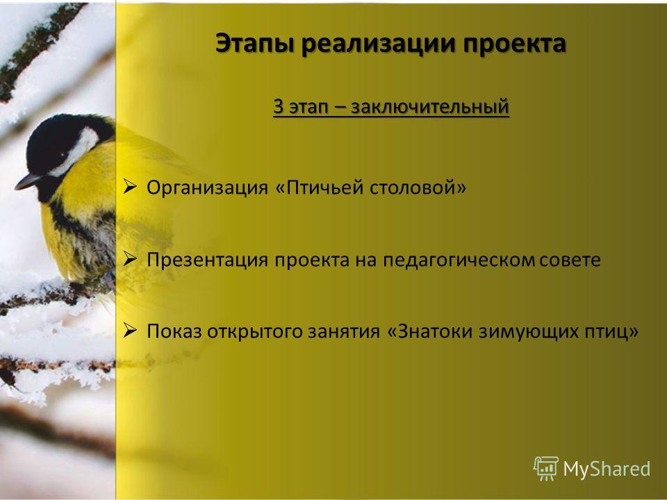 Этапы реализации проекта Организация «Птичьей столовой» Презентация проекта на педагогическом совете Показ открытого занятия «Знатоки зимующих птиц» 3 этап – заключительный