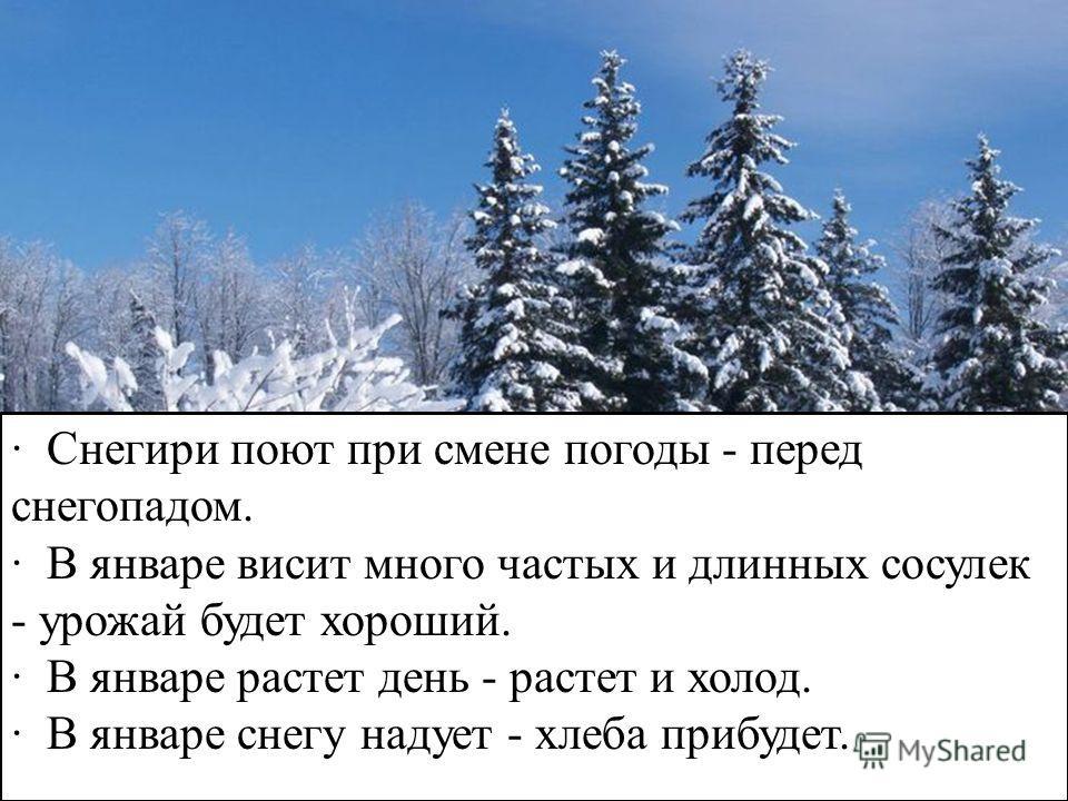· Снегири поют при смене погоды - перед снегопадом. · В январе висит много частых и длинных сосулек - урожай будет хороший. · В январе растет день - растет и холод. · В январе снегу надует - хлеба прибудет.