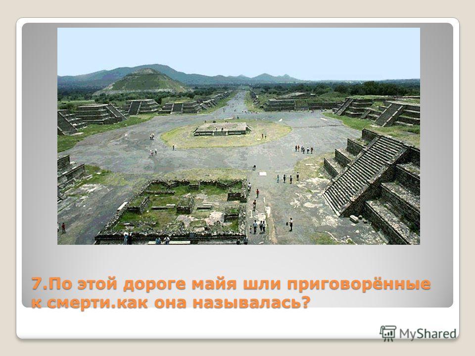 7. По этой дороге майя шли приговорённые к смерти.как она называлась?