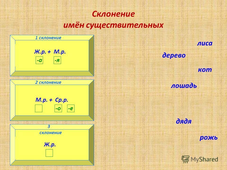 Склонение имён существительных 1 склонение 3 склонение 2 склонение Ж.р. + М.р. -а-я 1 склонение Ж.р. 3 склонение М.р. + Ср.р. -о-е 2 склонение лиса дерево кот лошадь дядя рожь