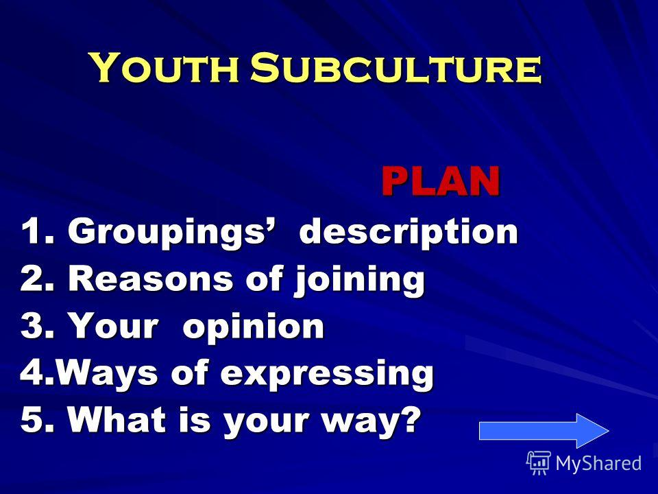 Youth Subculture PLAN PLAN 1. Groupings description 2. Reasons of joining 3. Your opinion 4. Ways of expressing 5. What is your way?