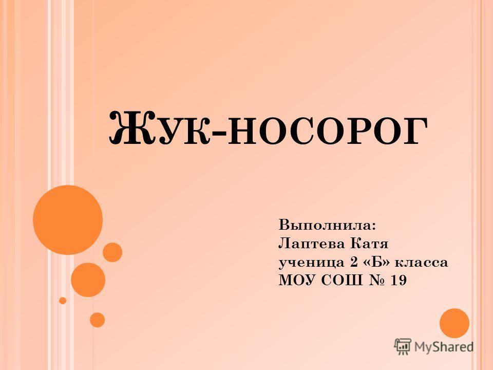 Ж УК - НОСОРОГ Выполнила: Лаптева Катя ученица 2 «Б» класса МОУ СОШ 19