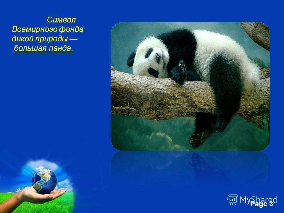 Free Powerpoint Templates Page 3 Символ Всемирного фонда дикой природы большая панда.