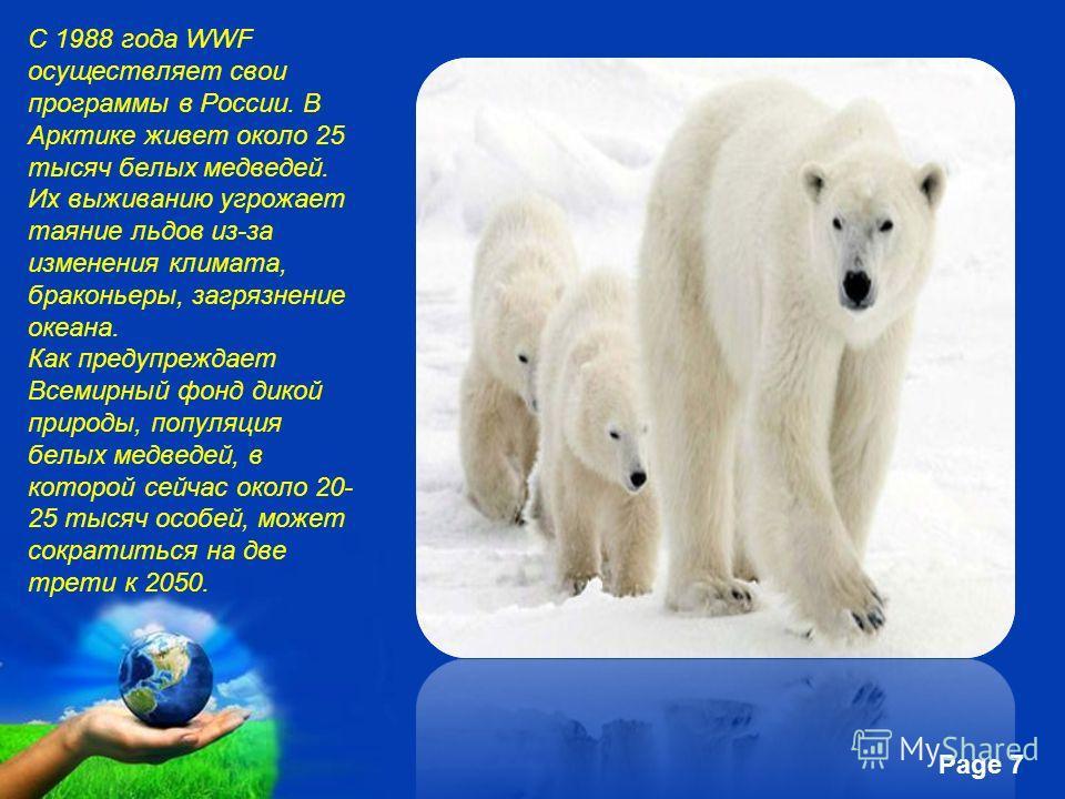 Free Powerpoint Templates Page 7 С 1988 года WWF осуществляет свои программы в России. В Арктике живет около 25 тысяч белых медведей. Их выживанию угрожает таяние льдов из-за изменения климата, браконьеры, загрязнение океана. Как предупреждает Всемир
