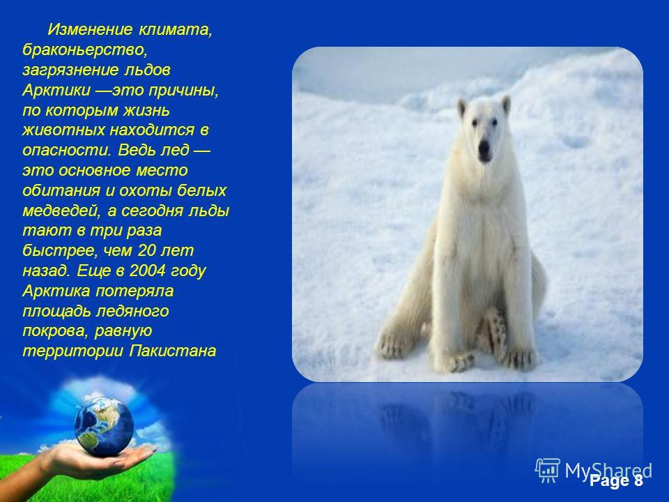 Free Powerpoint Templates Page 8 Изменение климата, браконьерство, загрязнение льдов Арктики это причины, по которым жизнь животных находится в опасности. Ведь лед это основное место обитания и охоты белых медведей, а сегодня льды тают в три раза быс