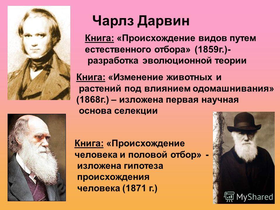 Чарлз Дарвин Книга: «Происхождение видов путем естественного отбора» (1859 г.)- разработка эволюционной теории Книга: «Изменение животных и растений под влиянием одомашнивания» (1868 г.) – изложена первая научная основа селекции Книга: «Происхождение