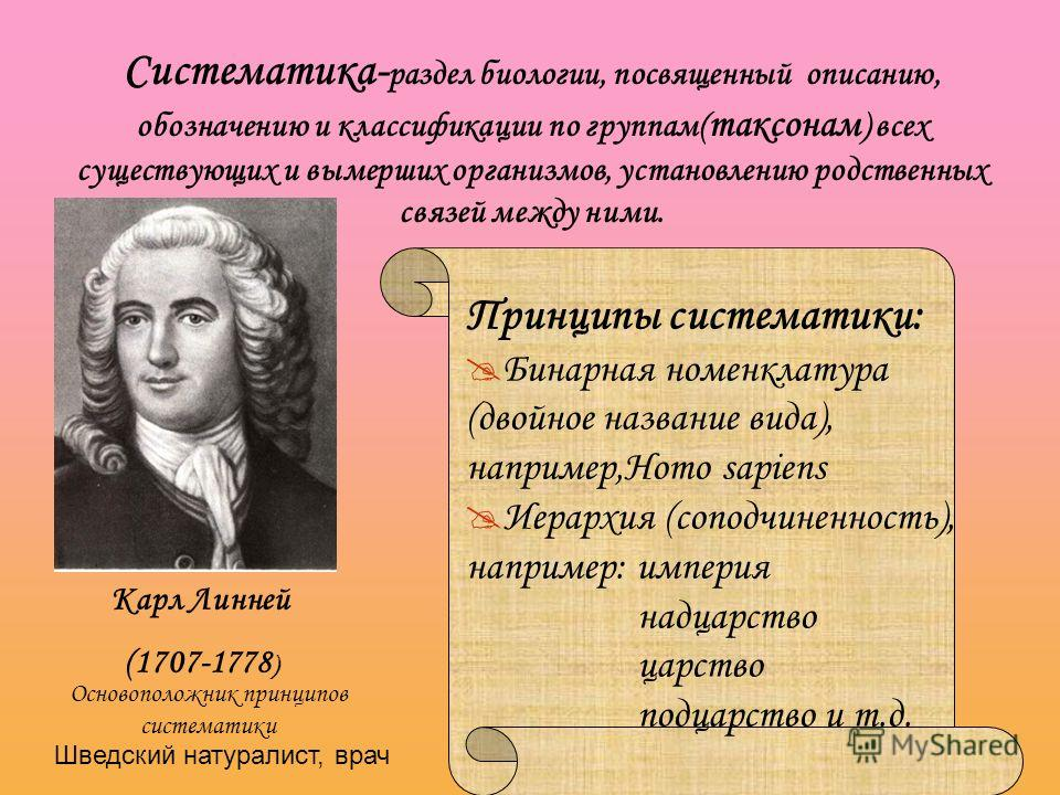 Систематика- раздел биологии, посвященный описанию, обозначению и классификации по группам( таксонам ) всех существующих и вымерших организмов, установлению родственных связей между ними. Карл Линней (1707-1778 ) Принципы систематики: Бинарная номенк