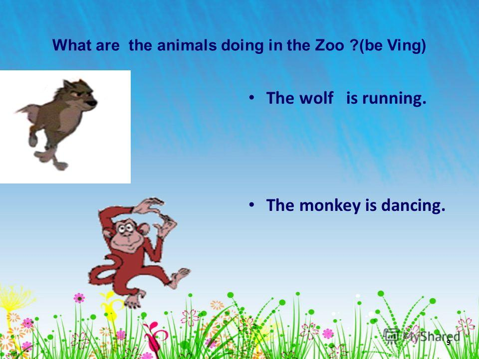 9 What are the animals doing in the Zoo ?(be Ving) The wolf is running. The monkey is dancing.