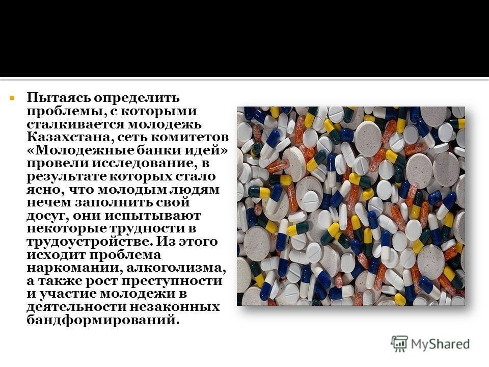 Пытаясь определить проблемы, с которыми сталкивается молодежь Казахстана, сеть комитетов «Молодежные банки идей» провели исследование, в результате которых стало ясно, что молодым людям нечем заполнить свой досуг, они испытывают некоторые трудности в