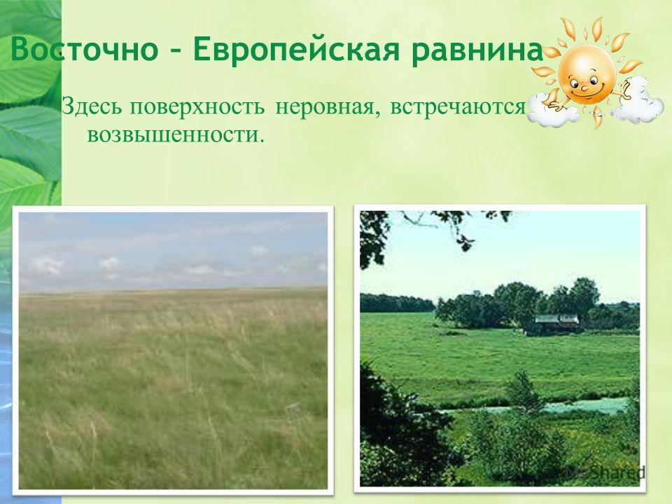 Восточно – Европейская равнина Здесь поверхность неровная, встречаются возвышенности.