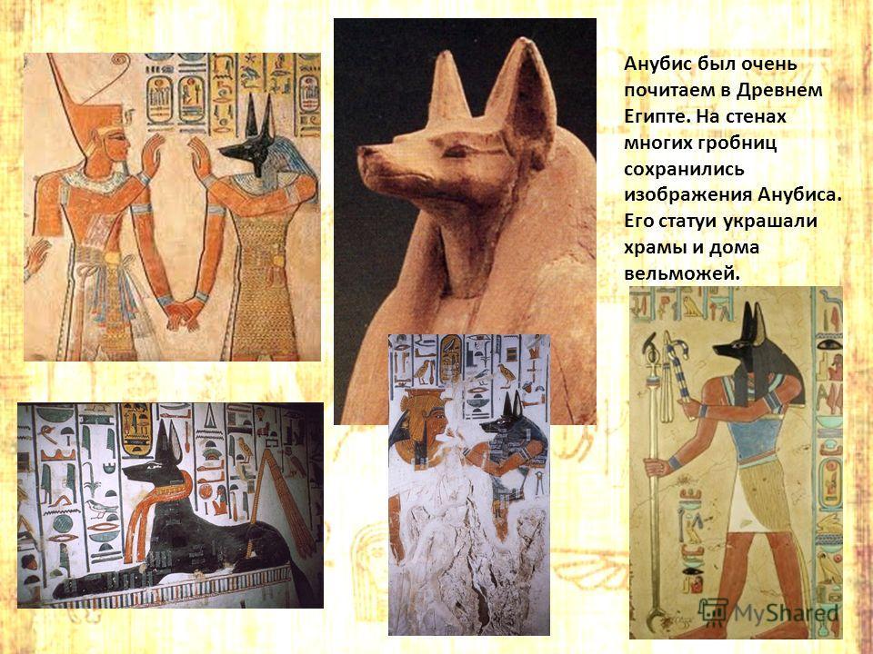 Анубис был очень почитаем в Древнем Египте. На стенах многих гробниц сохранились изображения Анубиса. Его статуи украшали храмы и дома вельможей.