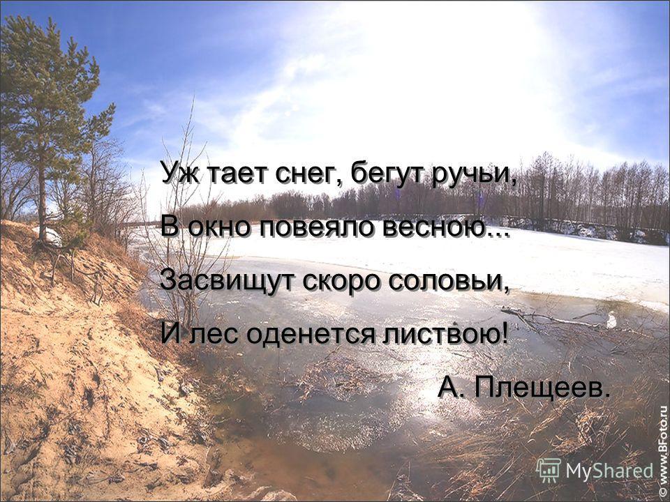 Уж тает снег, бегут ручьи, В окно повеяло весною... Засвищут скоро соловьи, И лес оденется листвою! А. Плещеев.