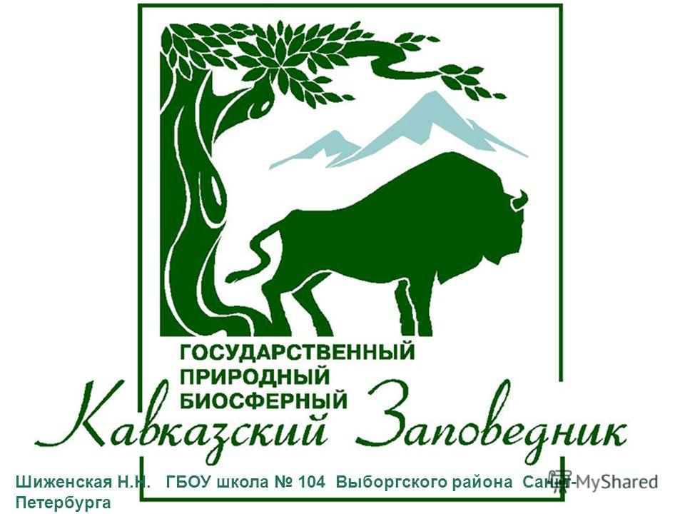 Шиженская Н.Н. ГБОУ школа 104 Выборгского района Санкт- Петербурга