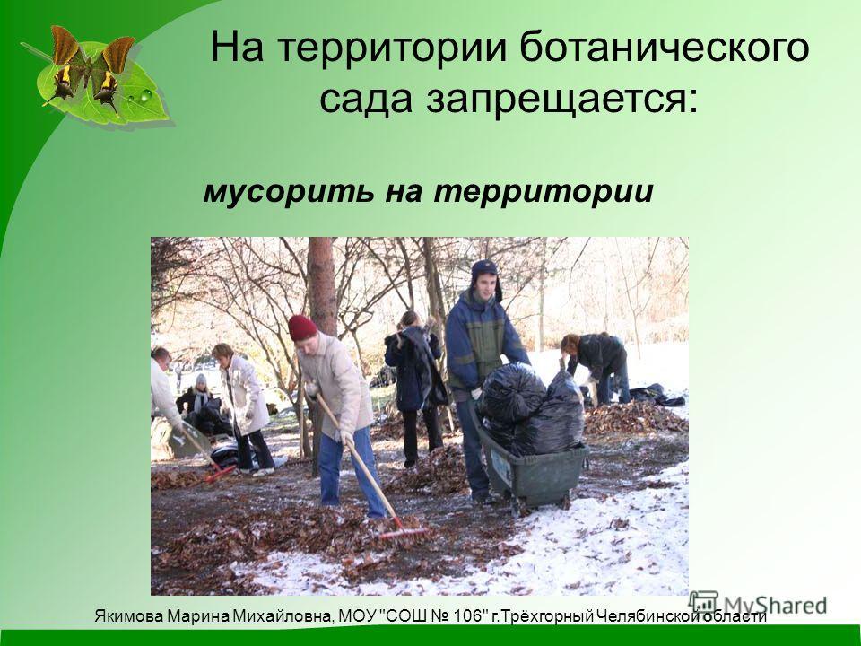 На территории ботанического сада запрещается: мусорить на территории Якимова Марина Михайловна, МОУ СОШ 106 г.Трёхгорный Челябинской области