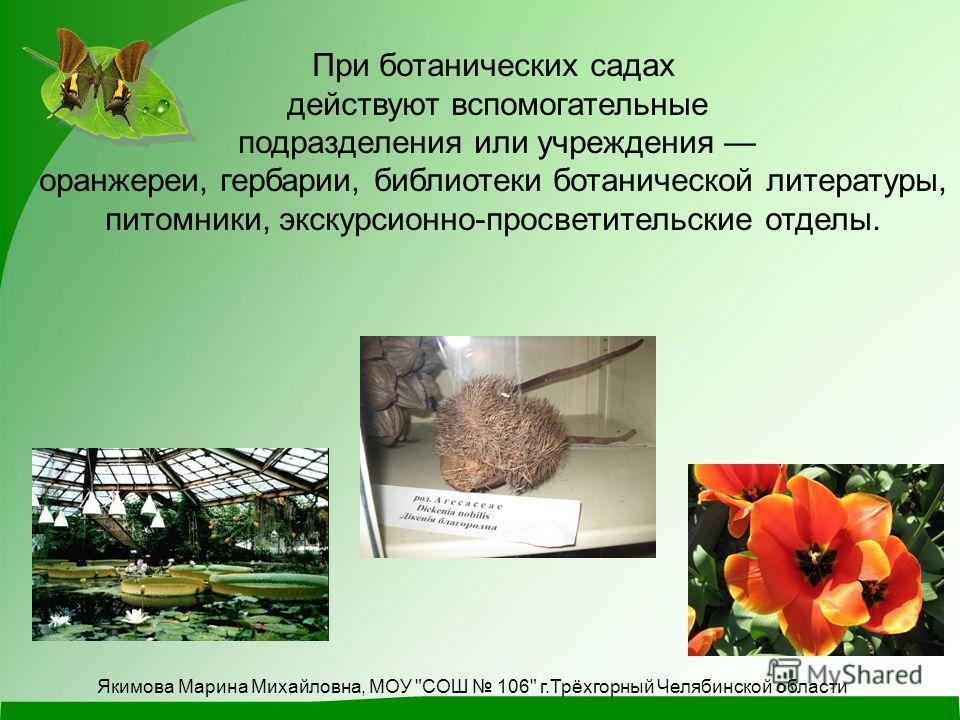 При ботанических садах действуют вспомогательные подразделения или учреждения оранжереи, гербарии, библиотеки ботанической литературы, питомники, экскурсионно-просветительские отделы. Якимова Марина Михайловна, МОУ