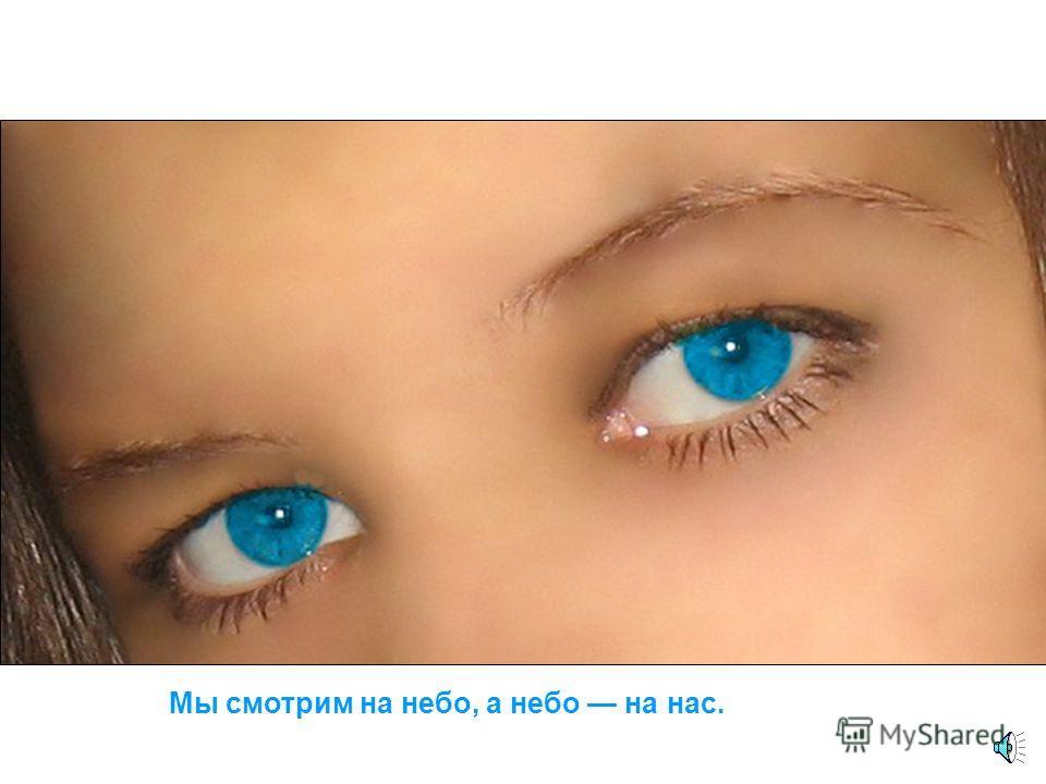 Оно голубое, как тысячи глаз.