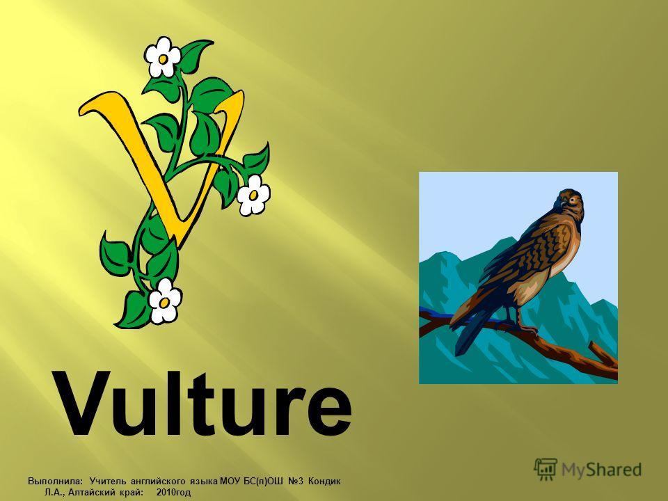 Vulture Выполнила: Учитель английского языка МОУ БС(п)ОШ 3 Кондик Л.А., Алтайский край: 2010 год