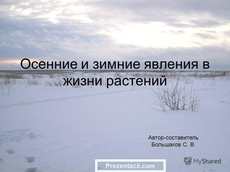 Осенние и зимние явления в жизни растений Автор-составитель Большаков С. В. Prezentacii.com