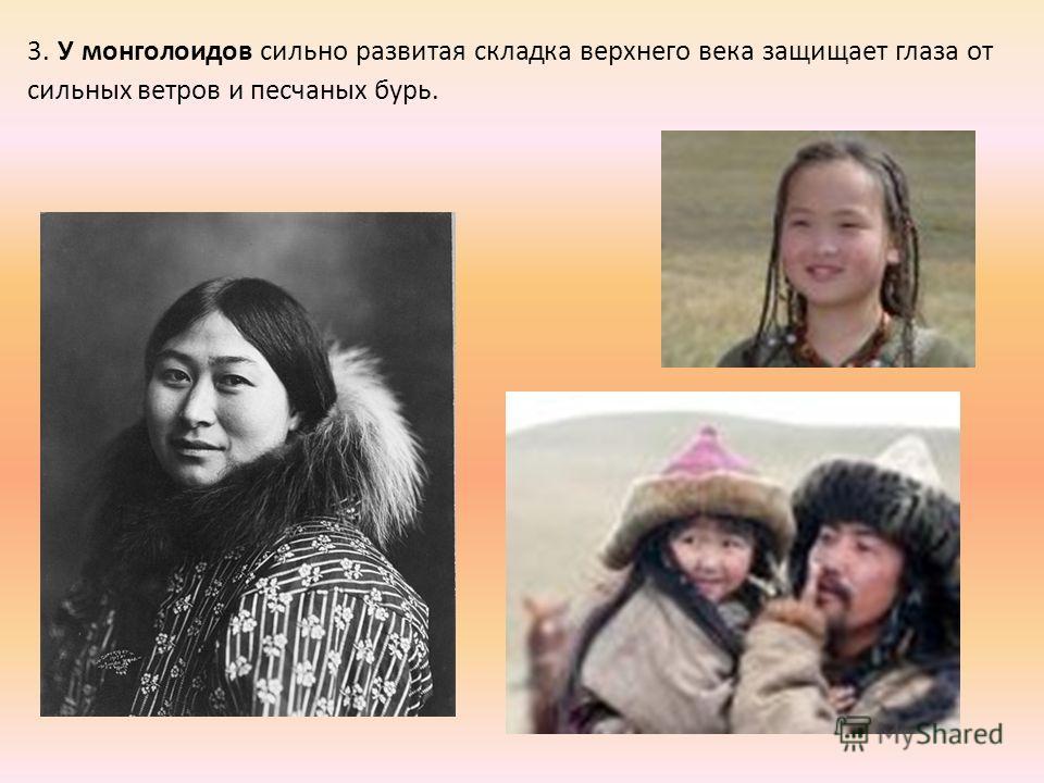 3. У монголоидов сильно развитая складка верхнего века защищает глаза от сильных ветров и песчаных бурь.