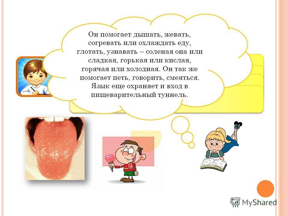 Пища вначале попадает в рот. А что находится во рту? Правильно – язык – строгий охранник. А для чего нам нужен язык? Он помогает дышать, жевать, согревать или охлаждать еду, глотать, узнавать – соленая она или сладкая, горькая или кислая, горячая или