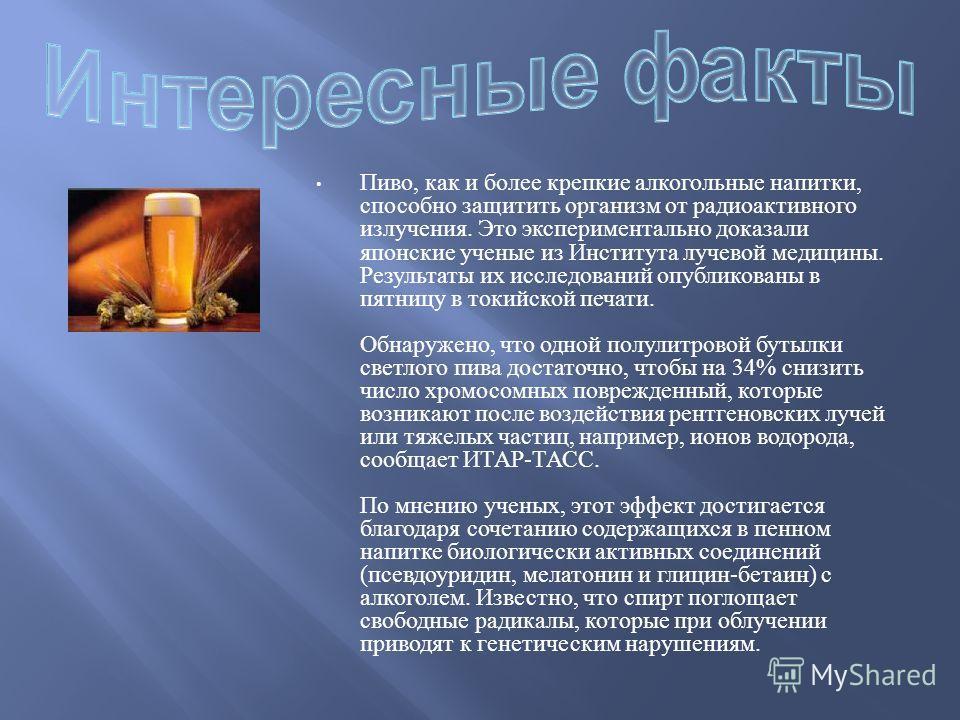Пиво, как и более крепкие алкогольные напитки, способно защитить организм от радиоактивного излучения. Это экспериментально доказали японские ученые из Института лучевой медицины. Результаты их исследований опубликованы в пятницу в токийской печати.