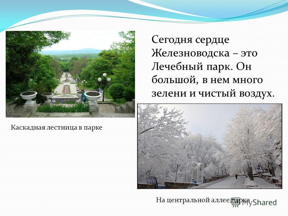 Сегодня сердце Железноводска – это Лечебный парк. Он большой, в нем много зелени и чистый воздух. Каскадная лестница в парке На центральной аллее парка