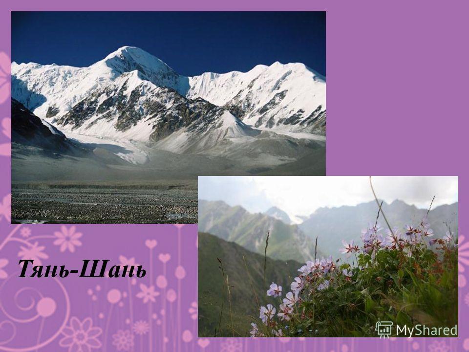 Тянь-Шань